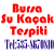 Bursa Su Kaçağı Tespiti